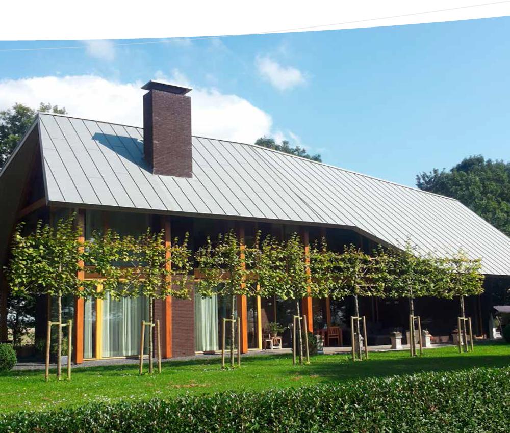 Systèmes de toiture en zinc