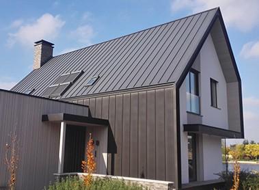 Stylowy dom z pokryciem z blachy NedZink NOIR, Holandia
