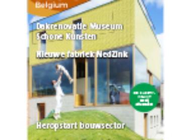 NedZink in Roof Belgium